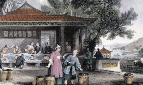 "Review of ""For all the Tea in China: How England Stole the World's Favorite Drink and Changed History"" by Sarah Rose"
